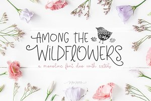 Among The Wildflowers | Font Duo