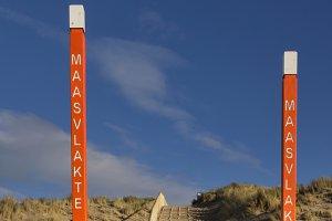 Poles on the Maasvlakte beach