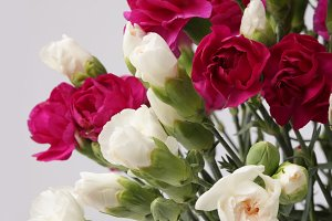 Flower bouquet on gray background.