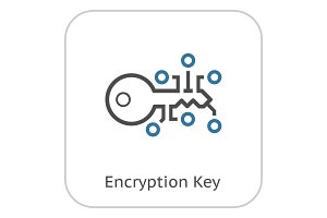 Encryption Key Icon.
