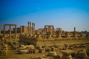 Panorama of Palmyra columns, ancient