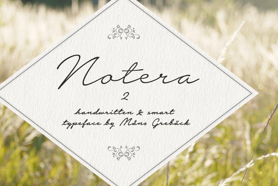 10 fonts - Notera 2 ~ Script Fonts ~ Creative Market