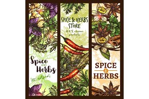 Vector sketch spices and herbs store banners