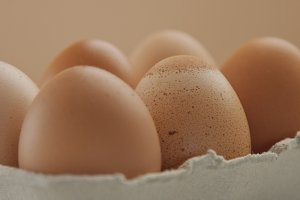closeup of six brown eggs