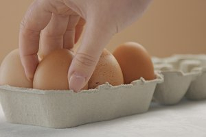 woman's hand put a brown egg to the box