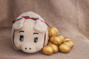 Pig doll closed to golden easter egg