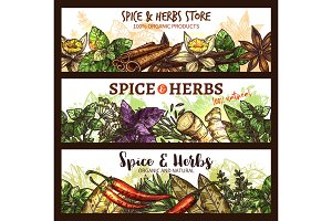 Vector spices and herbs farm store banners