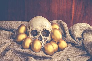 Human skull surrounded by golden egg