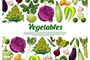 Vector vegetables and vegetarian veggie poster