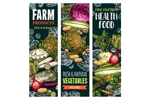 Vector sketch banners of natural farm vegetables