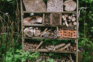 photo of a bug hotel
