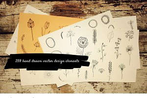 259 hand drawn design elements