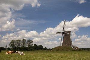 Windmill near Bronkhorst