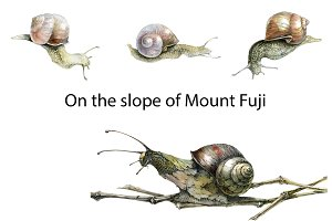 On the slope of Mount Fuji