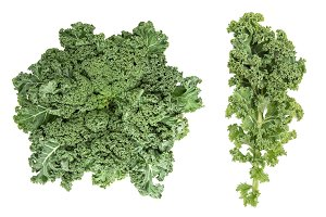 Kale cabbage Green vegetable leaf