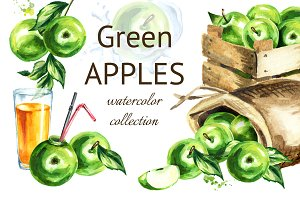 Green Apple. Watercolor collection