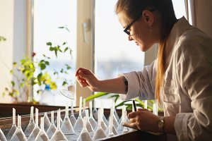 Woman graduate student analizing seeds on germination table.