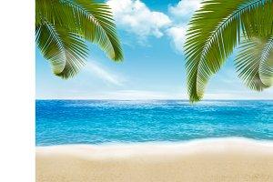 Palm leaves on beach. Vector illustr