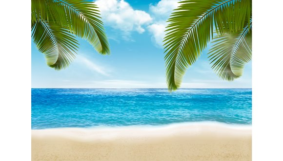 Palm Leaves On Beach Vector Illustr