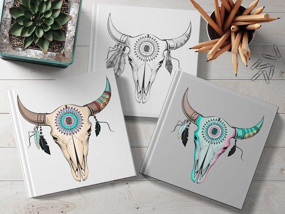 Set of 4 ethno bull skulls
