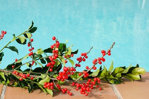 Christmas decorations in the pool.