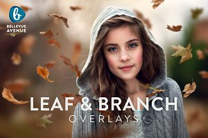 Leaf & Branch Overlays (Real)