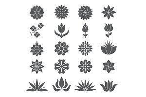 Stylized plants and flowers for different design projects