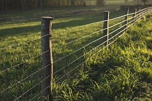 Fence in a field in a rural area