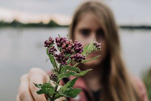 Flowers at the lake