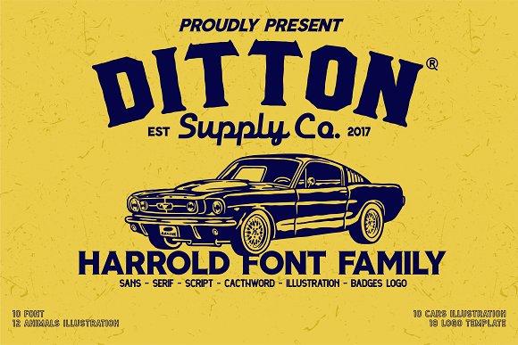Harrold Font Bundle 35 Off Display Fonts Creative Market