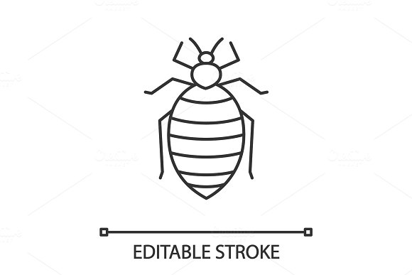 Bed Bug Linear Icon