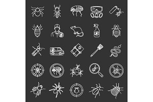 Pest control chalk icons set