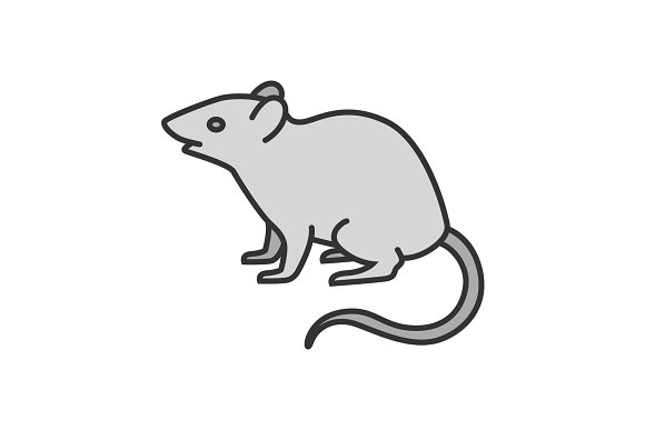 Mouse Rat Color Icon