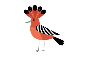 Hoopoe cartoon bird icon