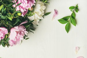 Flat-lay of peony flowers