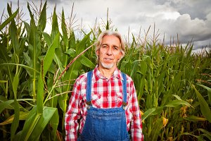 Farmer Standing Next To A Corn Field