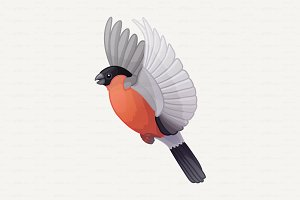 ♥ vector red bullfinche, finch, bird