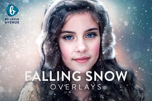 Falling Snow Overlays (Real)