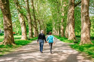 Senior Couple Walking Through A Park
