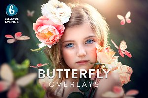 Butterfly Overlays (Real)