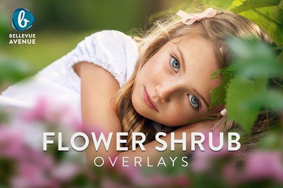 Flower Shrub Overlays