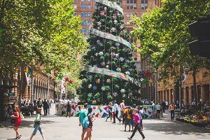 Big Christmas Tree in the City