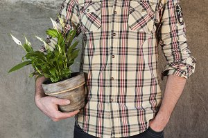 Man holding a calla plant