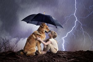 Child and dog under an umbrella