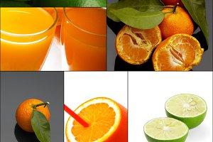citrus fruits collage 9.jpg