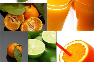 citrus fruits collage 10.jpg