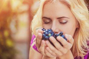 Beautiful woman harvesting grapes