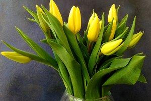 Elegant yellow tulips bouquet