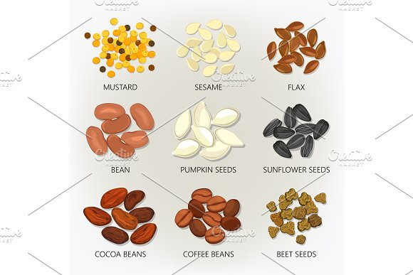 Icons of seeds and grains, beans