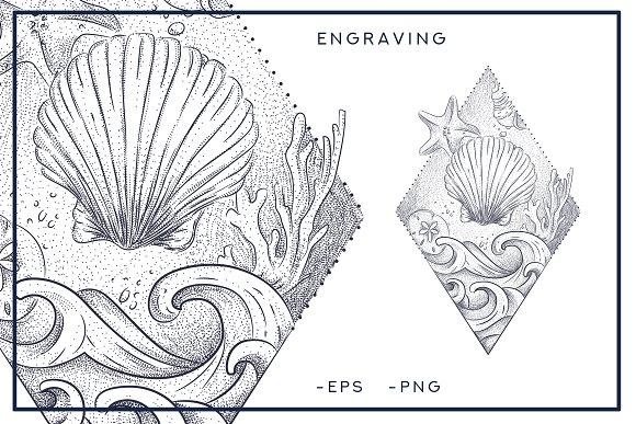 Seashells Style Engraving